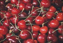 Chile proyecta que las exportaciones de cerezas a EE.UU. tendrán un aumento importante esta temporada