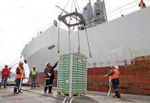 Exportación nacional de frutas a China crece y en Biobío hay altas expectativas